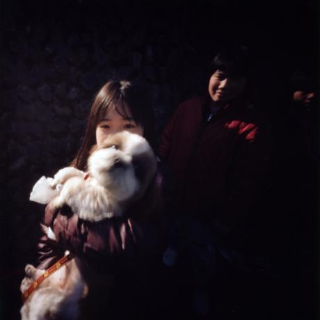 青梅のぬいぐるのように見える犬 東京都青梅市 Pinhole Photography_f0117059_16502528.jpg