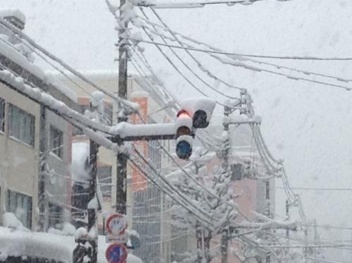 雪で信号が・・・_e0266363_1315164.jpg