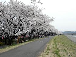 2013/4/1  今月のお休み_e0245899_144107.jpg