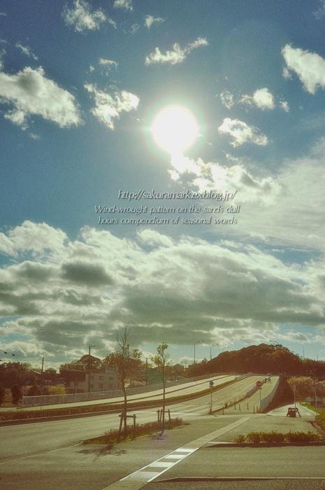 久々の青空。_f0235723_19162526.jpg