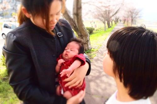 カンナちゃん 初お花見。_c0148232_19403447.jpg