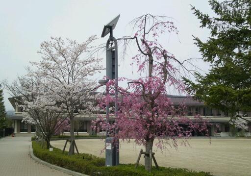 京都へ書道セット納品(^u^)_b0165454_8575985.jpg