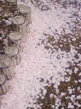 八ッ場ダム東京高裁判決と「撤退」と厚労省「新水道ビジョン」_f0197754_19135312.jpg