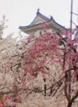 八ッ場ダム東京高裁判決と「撤退」と厚労省「新水道ビジョン」_f0197754_19142226.jpg