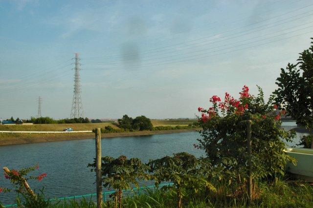 臨時の水やりと草取りを行いました。_d0257693_12381774.jpg