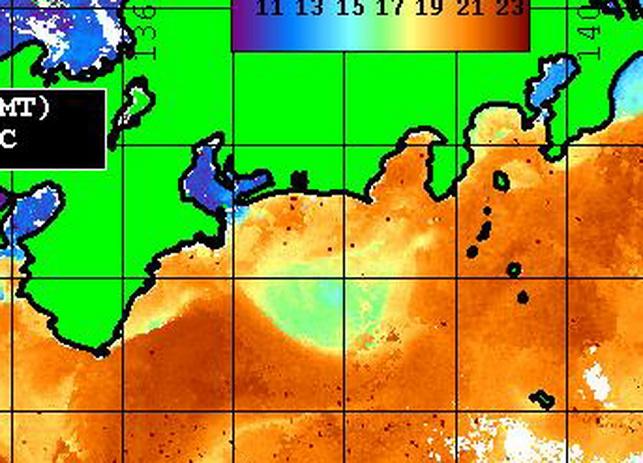 遠州灘の潮が拡散しそうですね~ 【カジキ・マグロトローリング】_f0009039_9361824.jpg