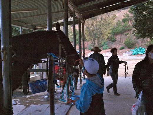 「福島の子どもたち香川へおいでプロジェクト」春企画4月2日レポ #save_children_b0242956_551233.jpg