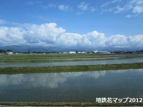 富山地鉄の花便り2013@チューリップと菜の花_a0243562_166566.jpg