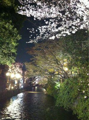 祇園 白川の桜_c0180971_0385263.jpg