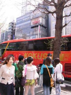 タイ人客がやってきた!(ツアーバス路駐台数調査 2013年4月) _b0235153_22361429.jpg