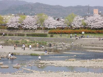 お弁当持って京都お花見散歩_b0252363_1892423.jpg