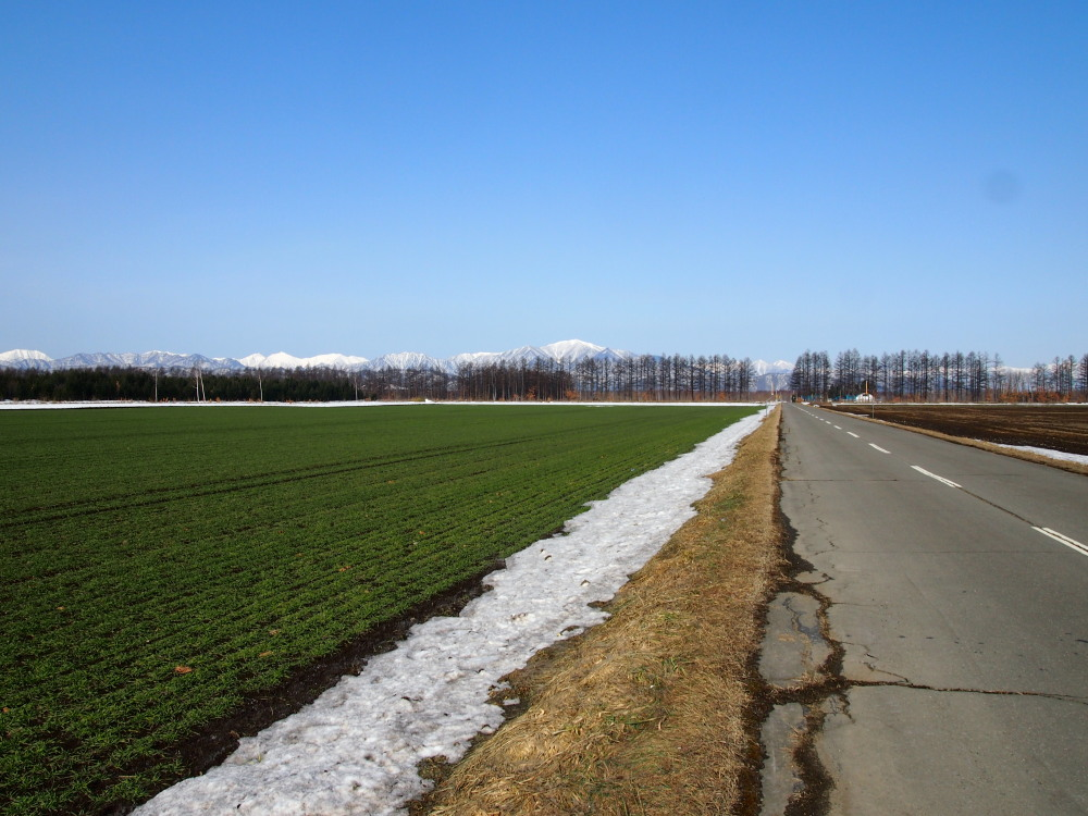 4月、雪どけ進む・・中札内村の農村風景_f0276498_1223769.jpg