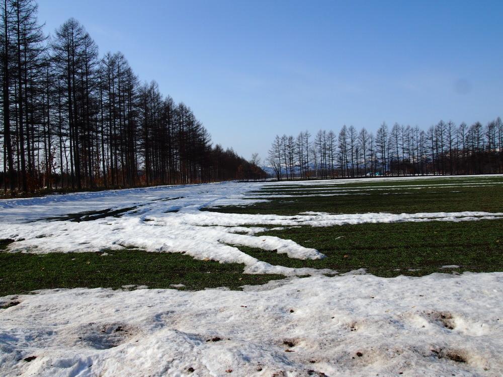 4月、雪どけ進む・・中札内村の農村風景_f0276498_1293816.jpg