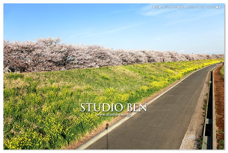 埼玉県で 撮影後のお花見♪_c0210599_316977.jpg