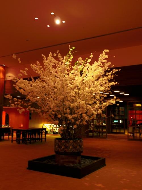 春ボジョレーと夜桜ビュッフェ@八芳園_e0123104_782310.jpg