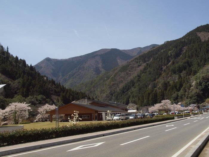 湯来ロッジ周辺の桜など_c0116915_005520.jpg