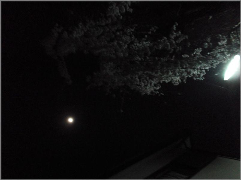 「大阪レトロ紀行~遠いルーツのある風景」_d0133024_12555548.jpg