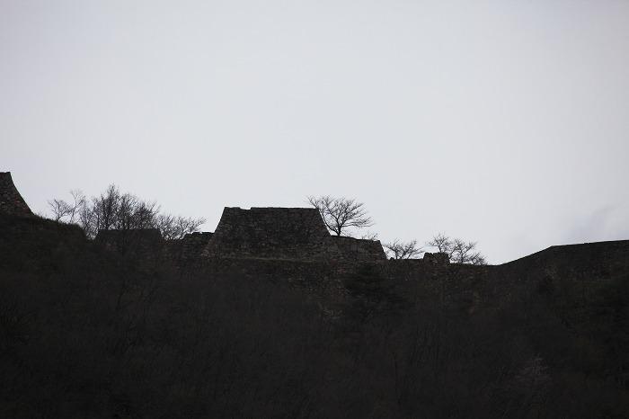 2013 桜 (竹田城跡・速報)_a0294534_195519100.jpg