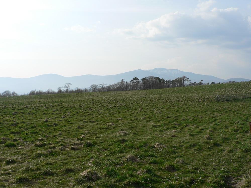 山に行きたいねえ_d0001843_013768.jpg