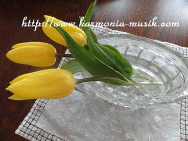 花を迎え入れるために・・_d0165645_21205688.jpg