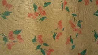 お花のスカート_e0268298_16312128.jpg