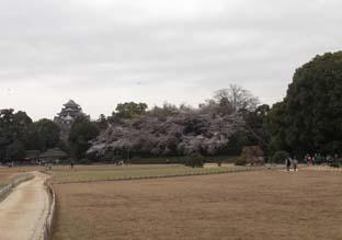 岡山へ行く_e0008704_2465037.jpg