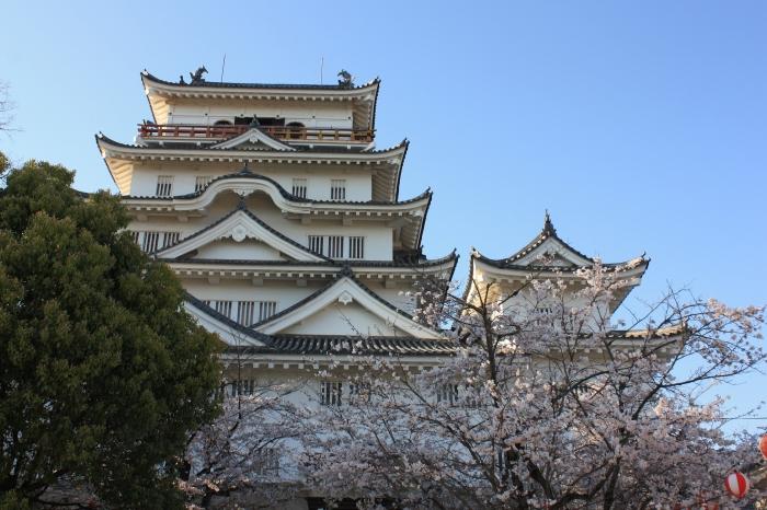 今年も福山に桜の季節がやってきました!_f0167415_14464246.jpg