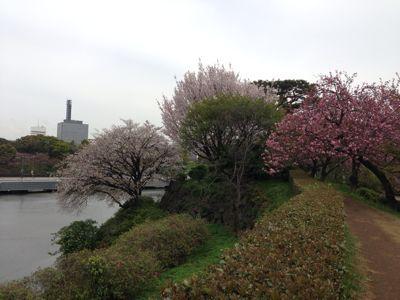 春の嵐の前に…_c0190424_19313921.jpg