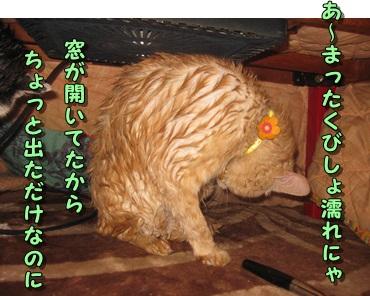b0151748_20133835.jpg