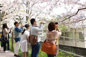 カメラ日和学校第5期レポート(3/23、24、30)_b0043961_2053153.jpg