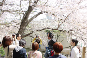 カメラ日和学校第5期レポート(3/23、24、30)_b0043961_2053313.jpg