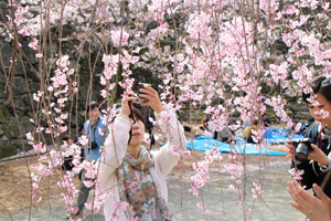 カメラ日和学校第5期レポート(3/23、24、30)_b0043961_20535670.jpg