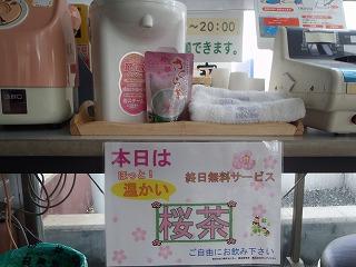 桜茶の無料サービスデイ_c0184994_18252642.jpg