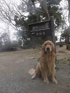 鎌倉遠足。_a0284100_926445.jpg