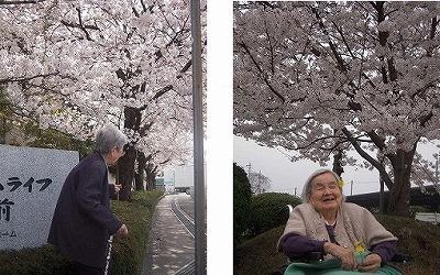 「お花見」<エスティームライフ学園前>_c0107602_10431914.jpg