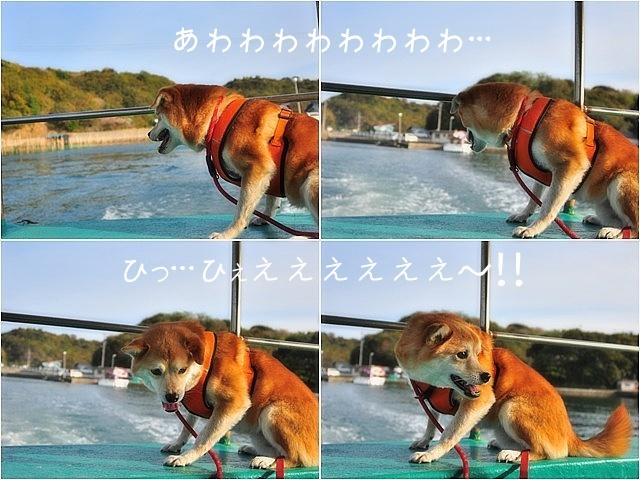 清水の舞台から飛び降りろ!@わんこと伊勢・志摩_e0005411_11583162.jpg