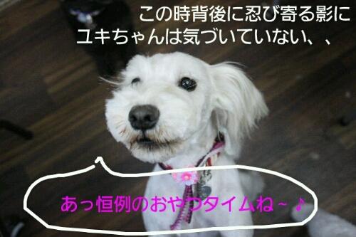 b0130018_22125332.jpg