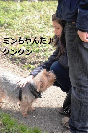 セロリのニンニク黒胡椒胡麻和え_d0104926_4293673.jpg