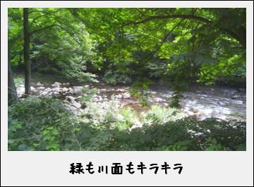 春の安家川で渓流釣りに釣戦!したのだ♪_c0259934_13532419.jpg