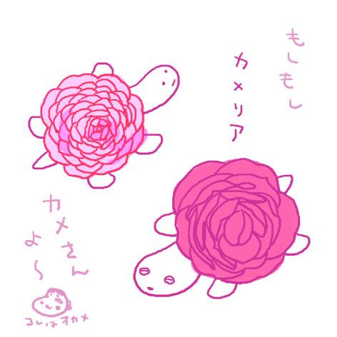 b0008241_111373.jpg