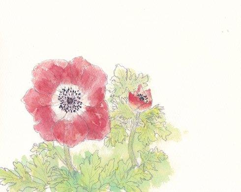 春の花・日本画教室モチーフあれこれ_c0160745_17433063.jpg