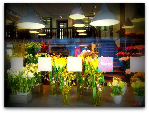 春はどこ?、ストレス、フランス語学校。_b0168823_22233974.jpg