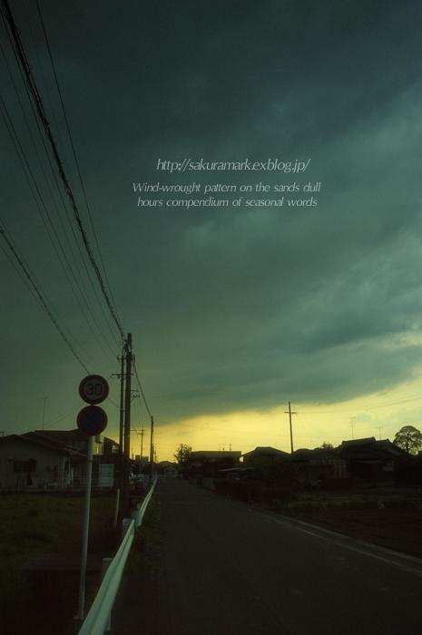 夕方はにわか雨。_f0235723_1804288.jpg