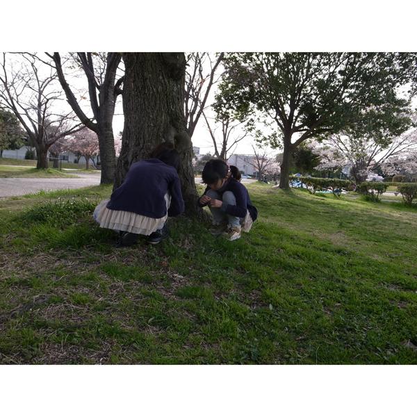 春休み奈良へ行く『平城京・大極殿』編_e0131432_9204963.jpg