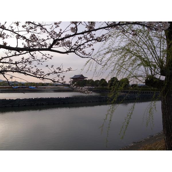 春休み奈良へ行く『平城京・大極殿』編_e0131432_921247.jpg