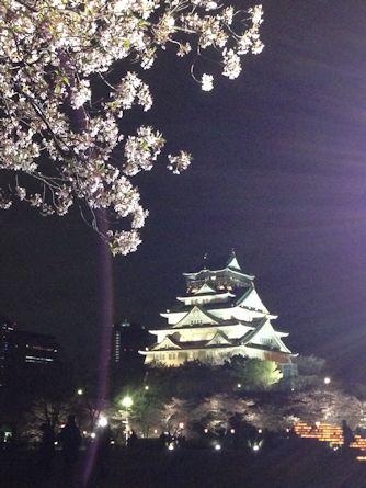 夜桜と大阪城とMother's Day_d0086634_13502792.jpg