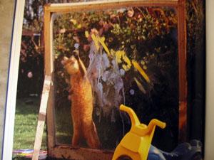猫のアーティストたち_a0155362_20524189.jpg