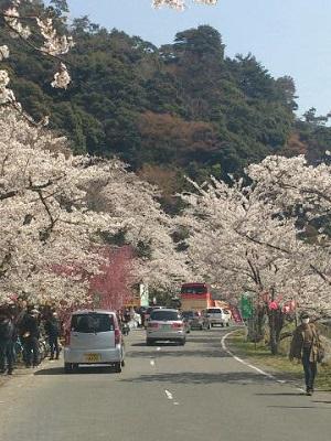 滋賀県おすすめスポット_e0246398_22154091.jpg