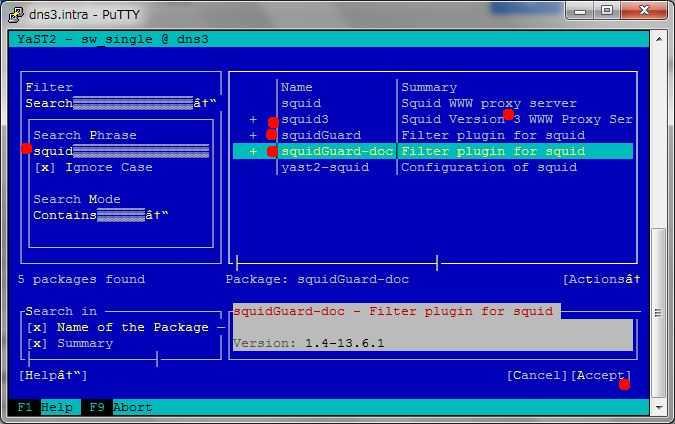 SUSE 11 で Squid3 を導入、設定_a0056607_18382847.jpg