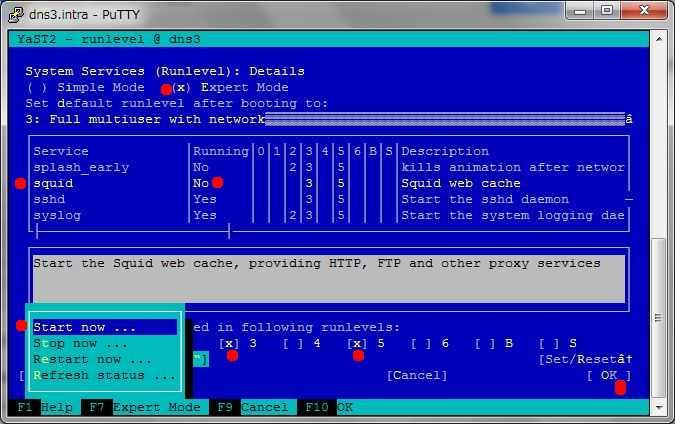 SUSE 11 で Squid3 を導入、設定_a0056607_18474751.jpg